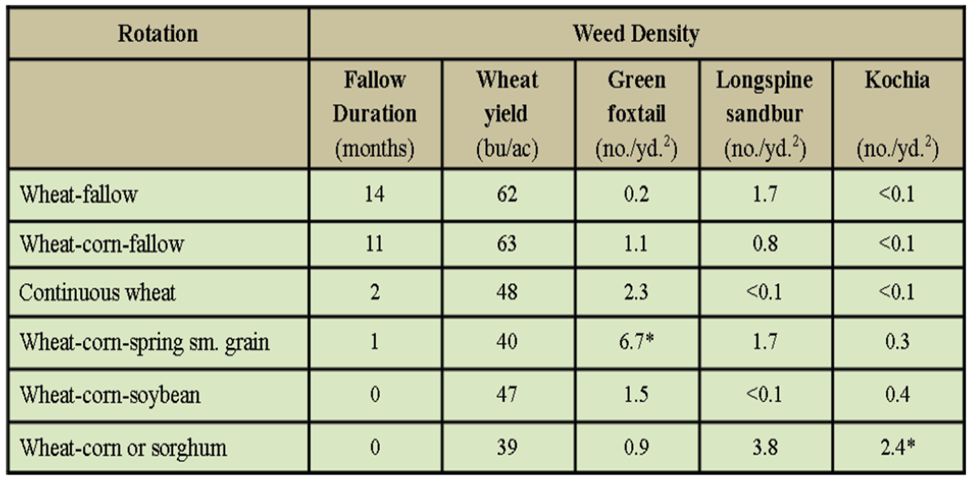 Effect of winter wheat varieties on summer annual weed  density