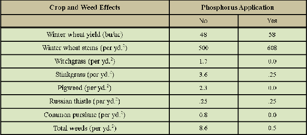 influence of phosphorus on winter wheat yield